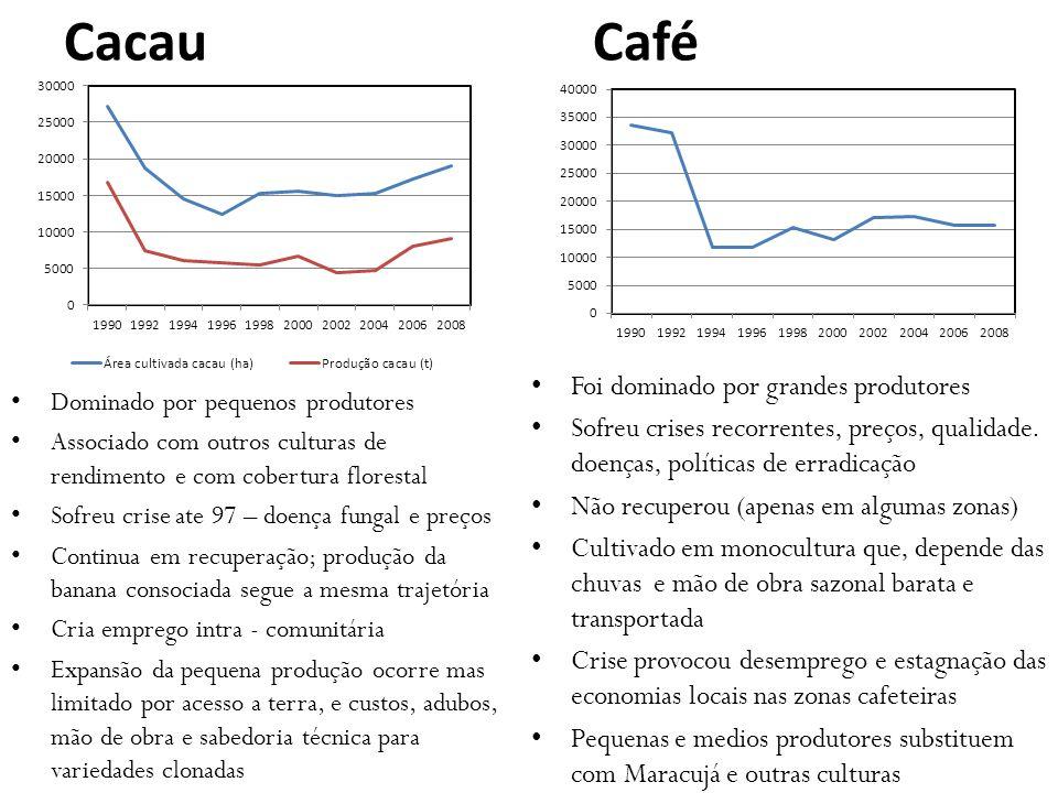 Cacau Café Dominado por pequenos produtores Associado com outros culturas de rendimento e com cobertura florestal Sofreu crise ate 97 – doença fungal