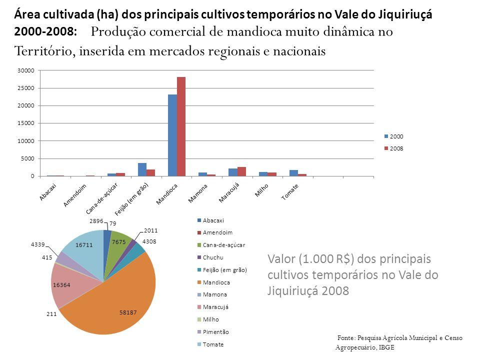 Área cultivada (ha) dos principais cultivos temporários no Vale do Jiquiriuçá 2000-2008: Produção comercial de mandioca muito dinâmica no Território,