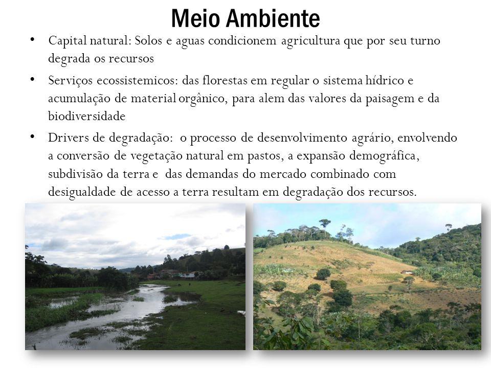 Meio Ambiente Capital natural: Solos e aguas condicionem agricultura que por seu turno degrada os recursos Serviços ecossistemicos: das florestas em r