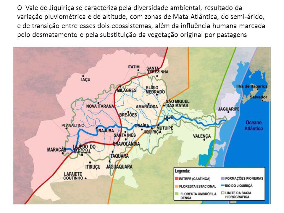 O Vale de Jiquiriça se caracteriza pela diversidade ambiental, resultado da variação pluviométrica e de altitude, com zonas de Mata Atlântica, do semi