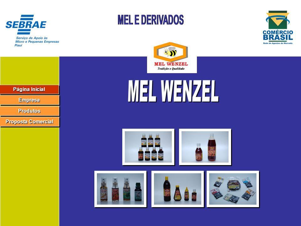 Página Inicial Página Inicial Página Inicial Página Inicial Empresa Produtos Proposta Comercial Proposta Comercial Proposta Comercial Proposta Comercial
