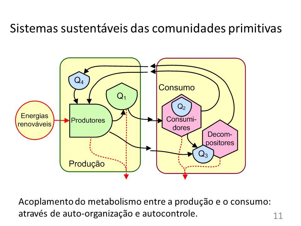 Acoplamento do metabolismo entre a produção e o consumo: através de auto-organização e autocontrole.
