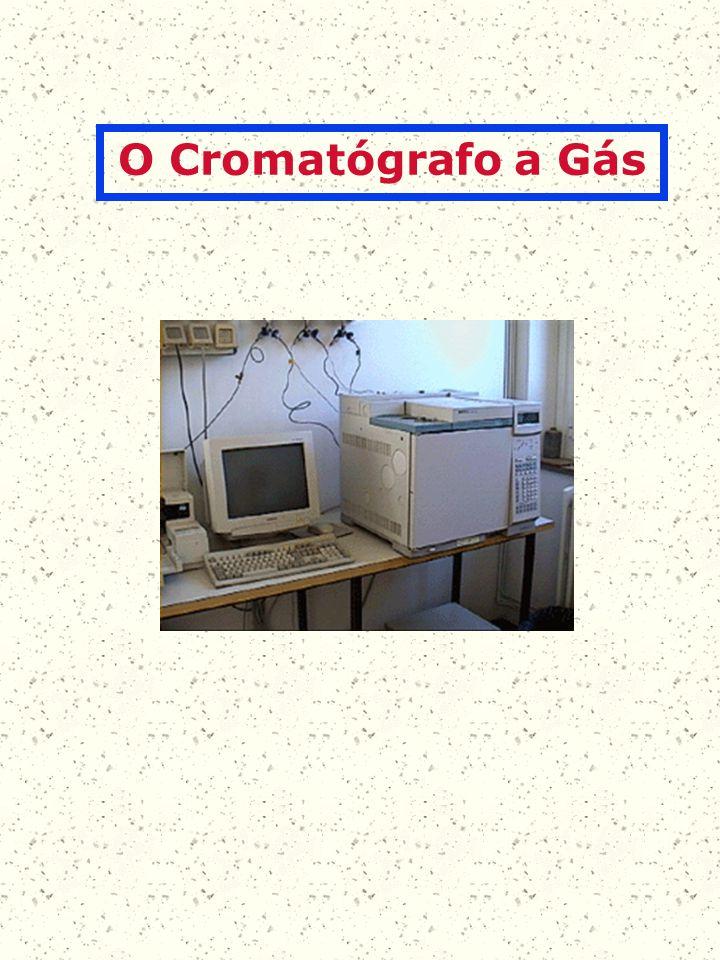 O Cromatógrafo a Gás