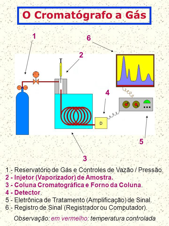 1 2 3 4 6 5 1 - Reservatório de Gás e Controles de Vazão / Pressão. 2 - Injetor (Vaporizador) de Amostra. 3 - Coluna Cromatográfica e Forno da Coluna.