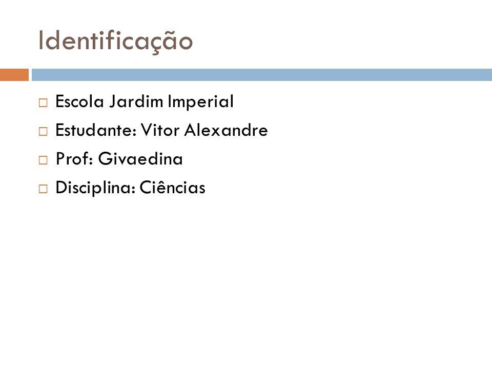 Identificação Escola Jardim Imperial Estudante: Vitor Alexandre Prof: Givaedina Disciplina: Ciências