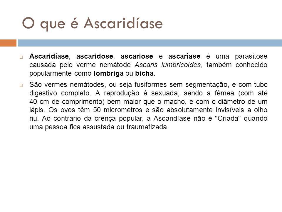 O que é Ascaridíase Ascaridíase, ascaridose, ascariose e ascaríase é uma parasitose causada pelo verme nemátode Ascaris lumbricoides, também conhecido