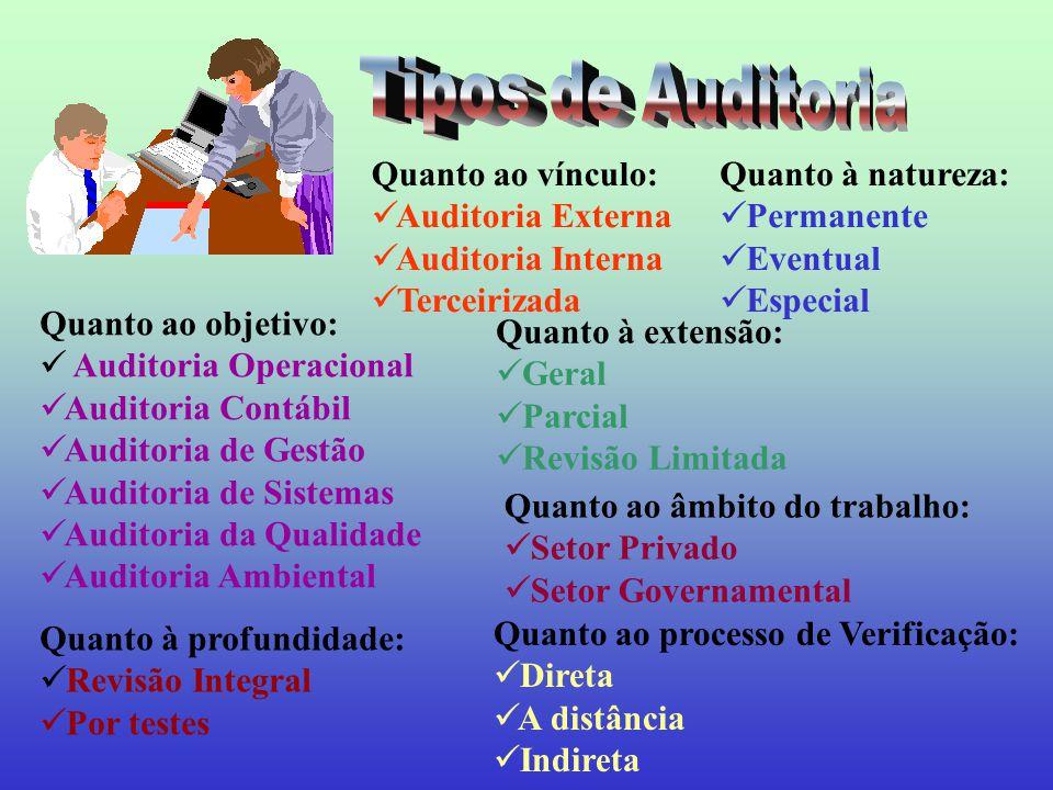 As normas de auditoria se constituem em regras práticas que visam a orientar o profissional na consecução dos objetivos traçados para determinado trabalho.