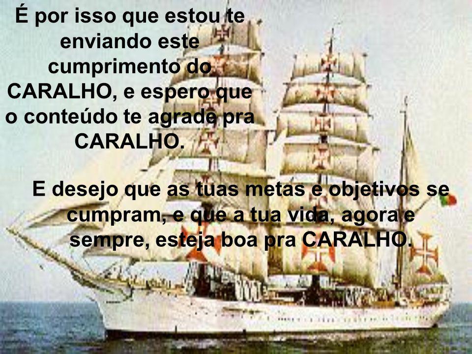 É por isso que estou te enviando este cumprimento do CARALHO, e espero que o conteúdo te agrade pra CARALHO.