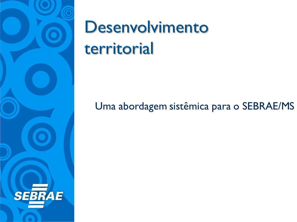Uma abordagem sistêmica para o SEBRAE/MS