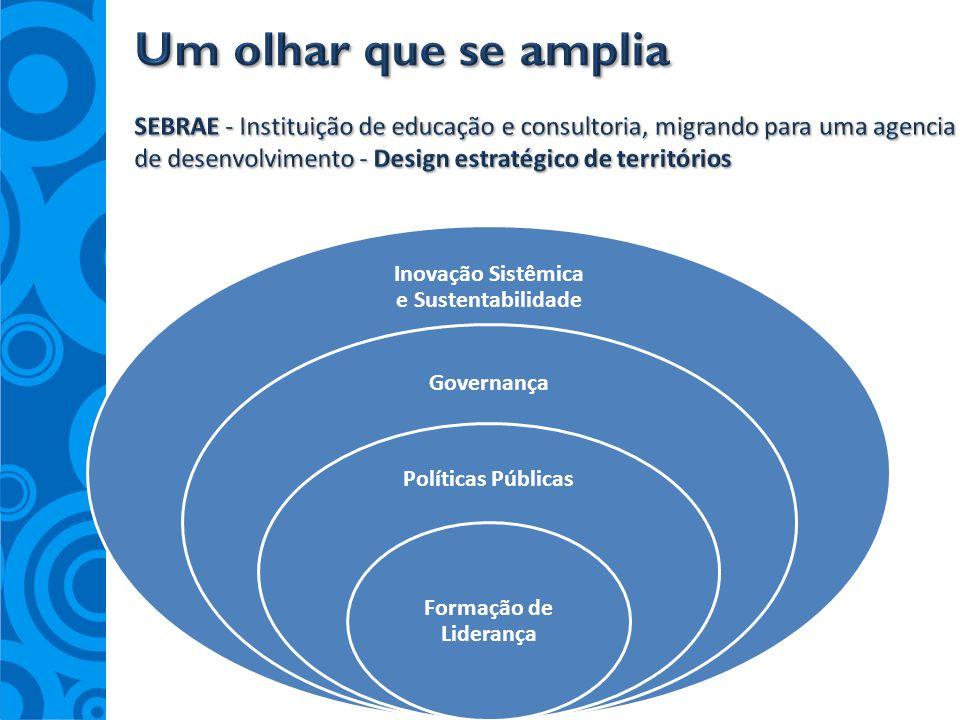 Inovação Sistêmica e Sustentabilidade Governança Políticas Públicas Formação de Liderança