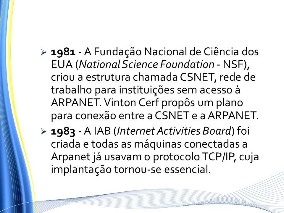 1981 - A Fundação Nacional de Ciência dos EUA (National Science Foundation - NSF), criou a estrutura chamada CSNET, rede de trabalho para instituições