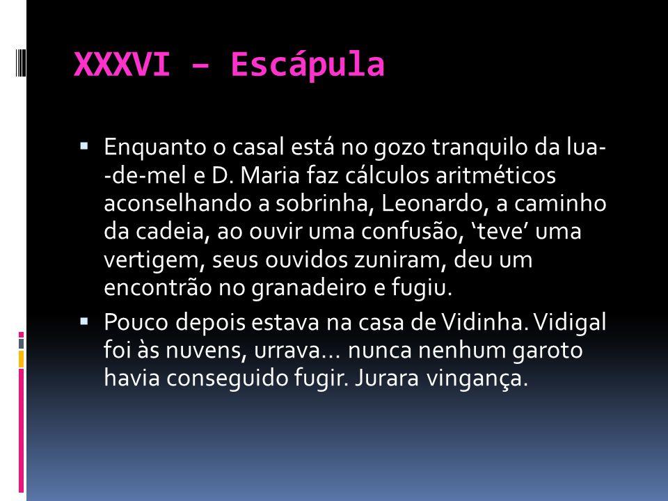 XXXVI – Escápula Enquanto o casal está no gozo tranquilo da lua- -de-mel e D. Maria faz cálculos aritméticos aconselhando a sobrinha, Leonardo, a cami