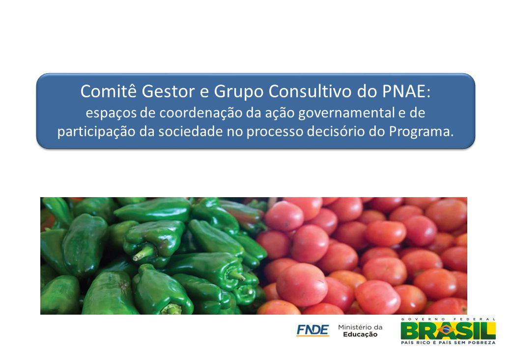 Comitê Gestor e Grupo Consultivo do PNAE : espaços de coordenação da ação governamental e de participação da sociedade no processo decisório do Progra