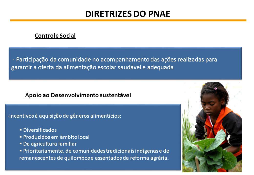 DIRETRIZES DO PNAE Controle Social - Participação da comunidade no acompanhamento das ações realizadas para garantir a oferta da alimentação escolar s