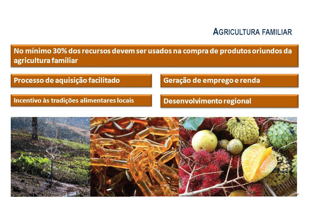 Processo de aquisição facilitado No mínimo 30% dos recursos devem ser usados na compra de produtos oriundos da agricultura familiar Incentivo às tradi
