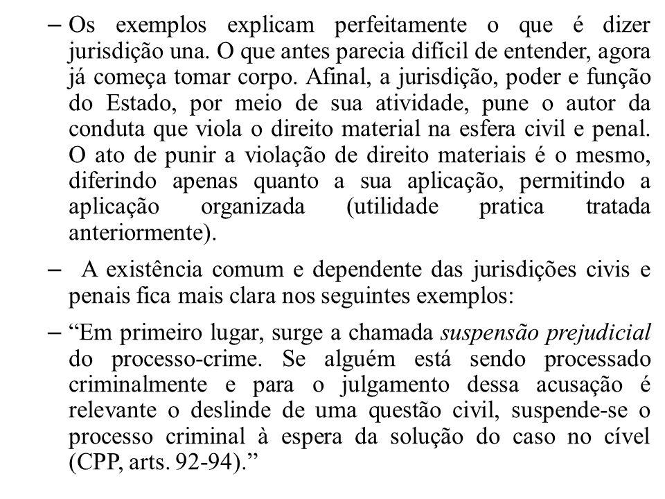 – Reparem bem, o que os doutrinadores estão dizendo, a jurisdição penal, aguardará a decisão da civil, para julgar uma causa.