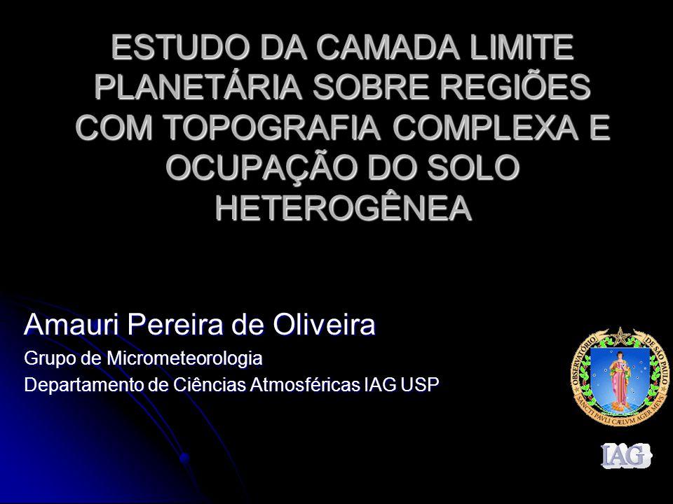 ESTUDO DA CAMADA LIMITE PLANETÁRIA SOBRE REGIÕES COM TOPOGRAFIA COMPLEXA E OCUPAÇÃO DO SOLO HETEROGÊNEA Amauri Pereira de Oliveira Grupo de Micrometeo