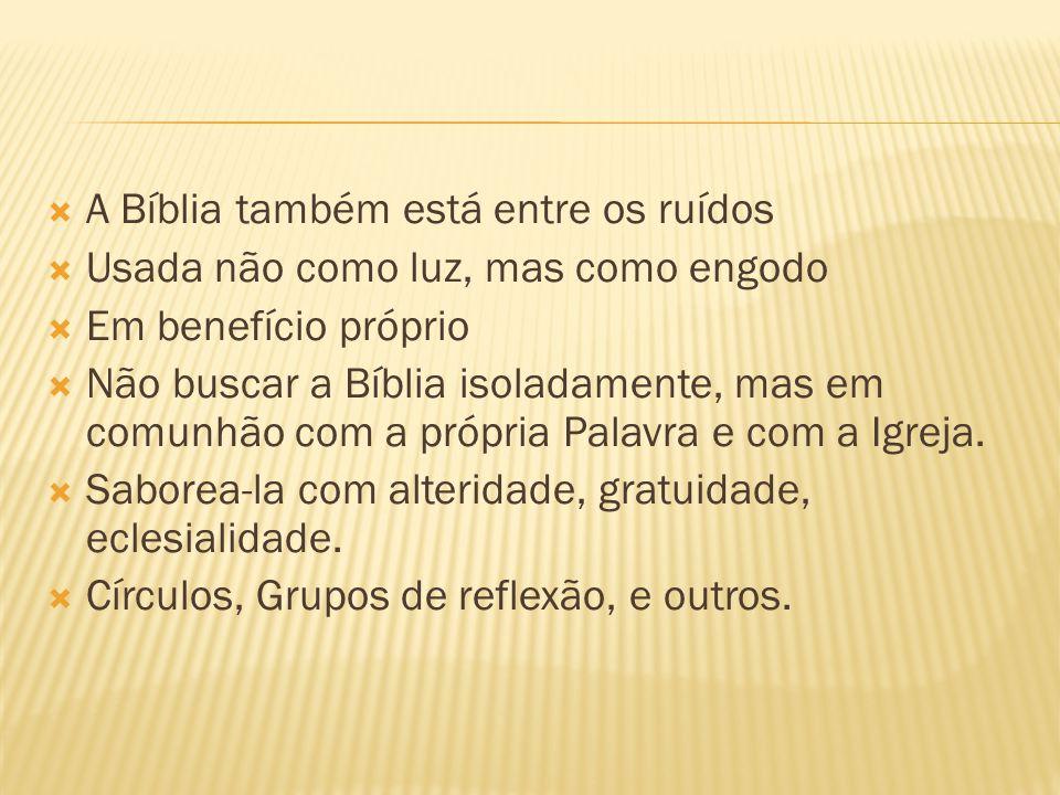 A Bíblia também está entre os ruídos Usada não como luz, mas como engodo Em benefício próprio Não buscar a Bíblia isoladamente, mas em comunhão com a