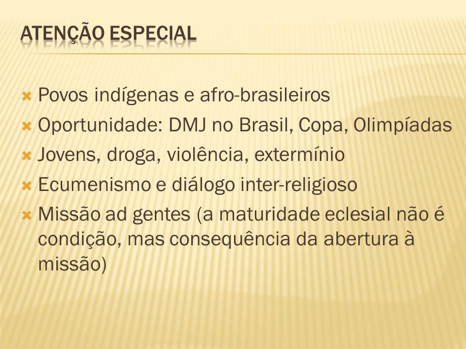 Povos indígenas e afro-brasileiros Oportunidade: DMJ no Brasil, Copa, Olimpíadas Jovens, droga, violência, extermínio Ecumenismo e diálogo inter-relig