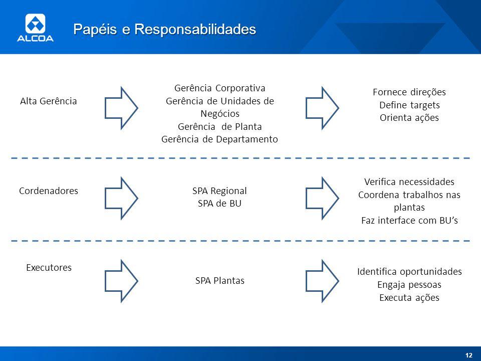 Alta Gerência Cordenadores Executores Gerência Corporativa Gerência de Unidades de Negócios Gerência de Planta Gerência de Departamento SPA Regional S