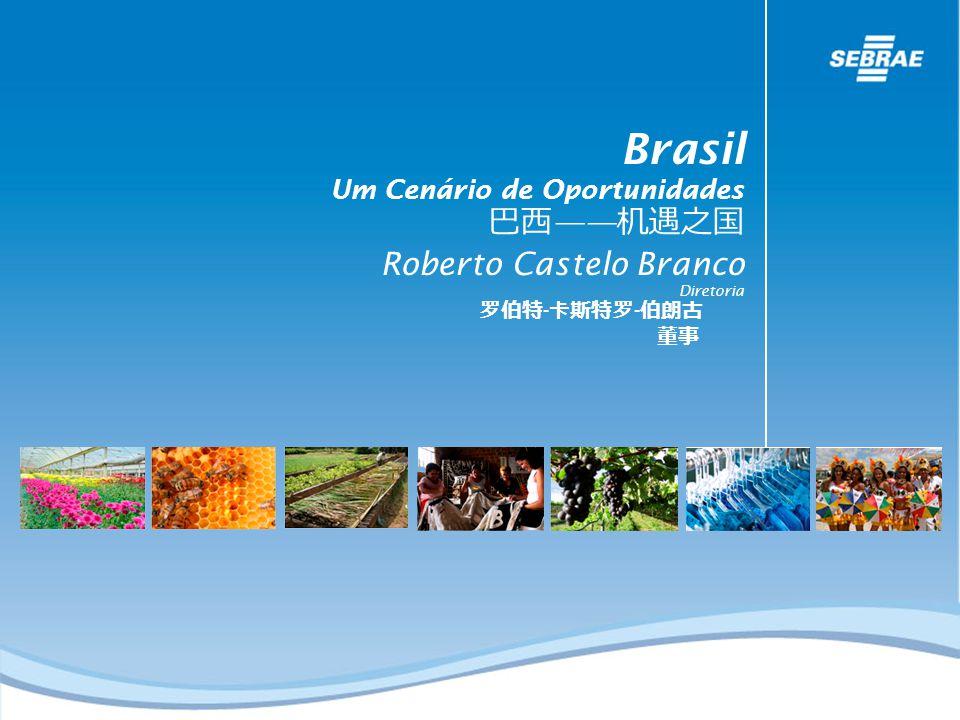 Fonte: SECEX/MIDIC Observatório Empresarial SEBRAE/PE Diversificação do Comércio Internacional Brasil Um Cenário de Oportunidades Roberto Castelo Branco Diretoria - -