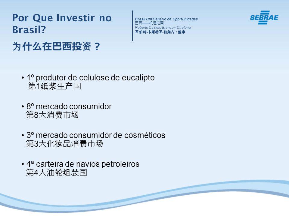 1º produtor de celulose de eucalipto 1 8º mercado consumidor 8 3º mercado consumidor de cosméticos 3 4ª carteira de navios petroleiros 4 Por Que Investir no Brasil.