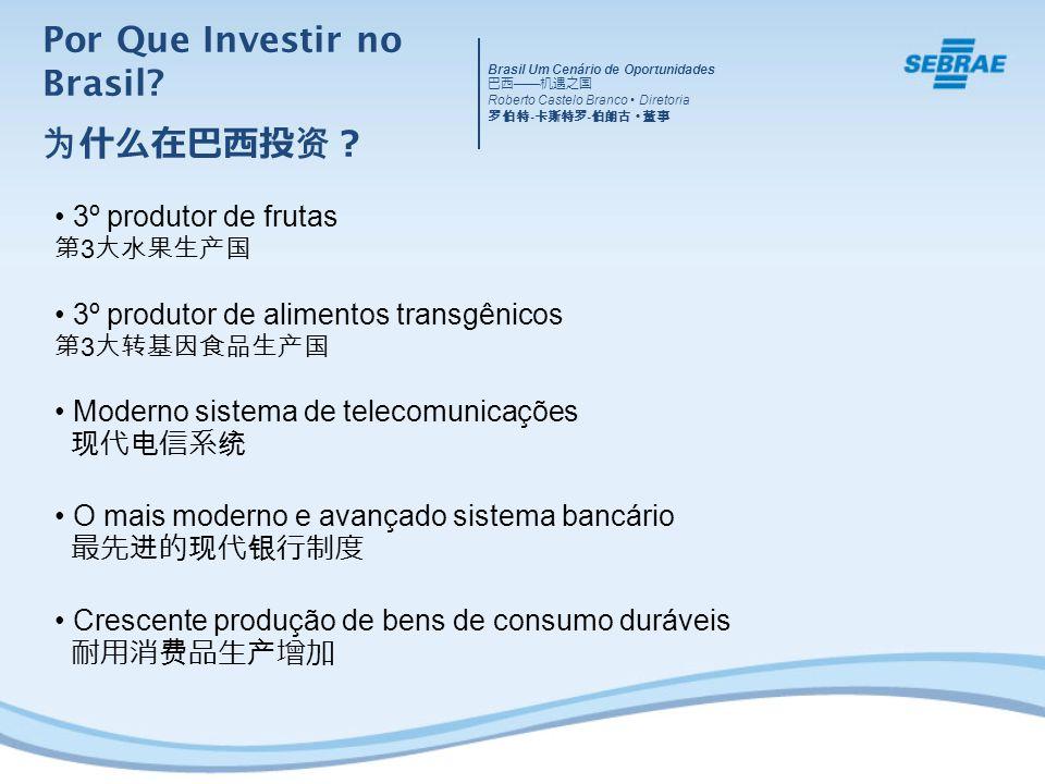 3º produtor de frutas 3 3º produtor de alimentos transgênicos 3 Moderno sistema de telecomunicações O mais moderno e avançado sistema bancário Crescente produção de bens de consumo duráveis Por Que Investir no Brasil.
