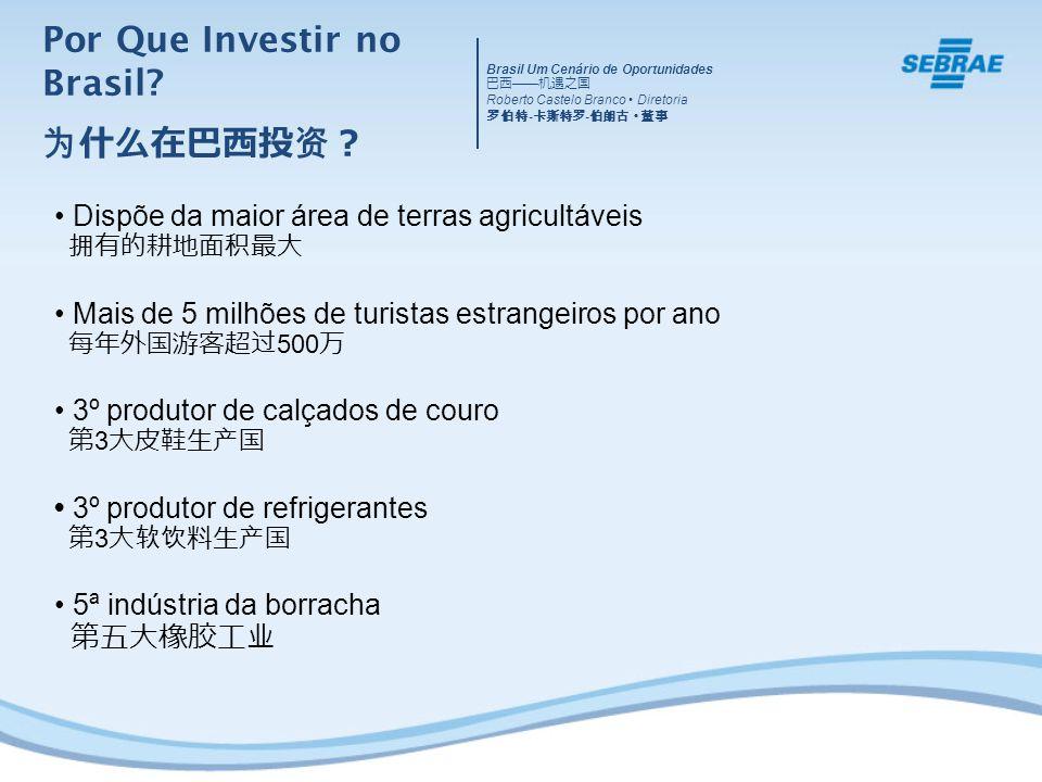 Dispõe da maior área de terras agricultáveis Mais de 5 milhões de turistas estrangeiros por ano 500 3º produtor de calçados de couro 3 3º produtor de refrigerantes 3 5ª indústria da borracha Por Que Investir no Brasil.