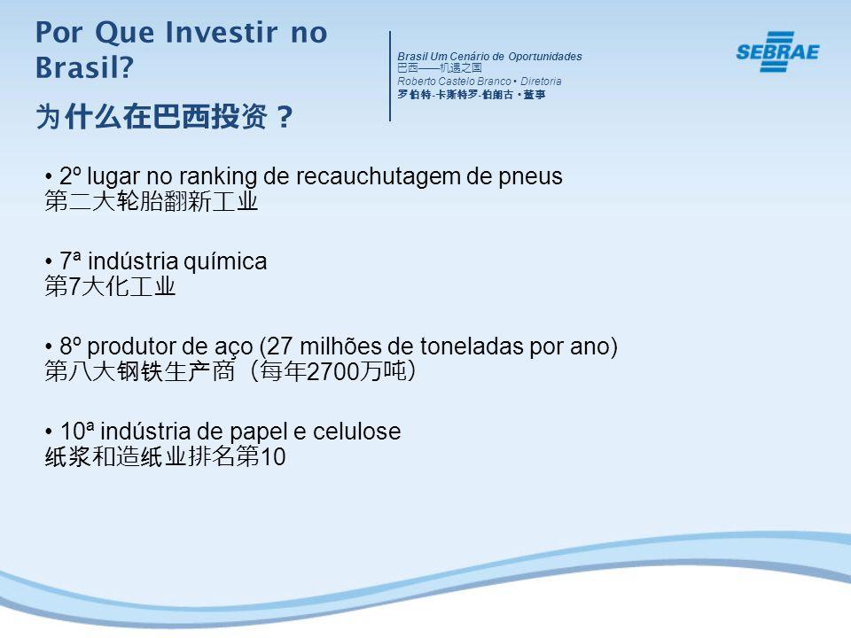 2º lugar no ranking de recauchutagem de pneus 7ª indústria química 7 8º produtor de aço (27 milhões de toneladas por ano) 2700 10ª indústria de papel e celulose 10 Por Que Investir no Brasil.