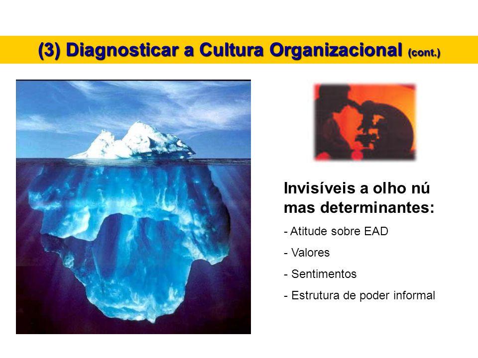 Invisíveis a olho nú mas determinantes: - Atitude sobre EAD - Valores - Sentimentos - Estrutura de poder informal (3) Diagnosticar a Cultura Organizac