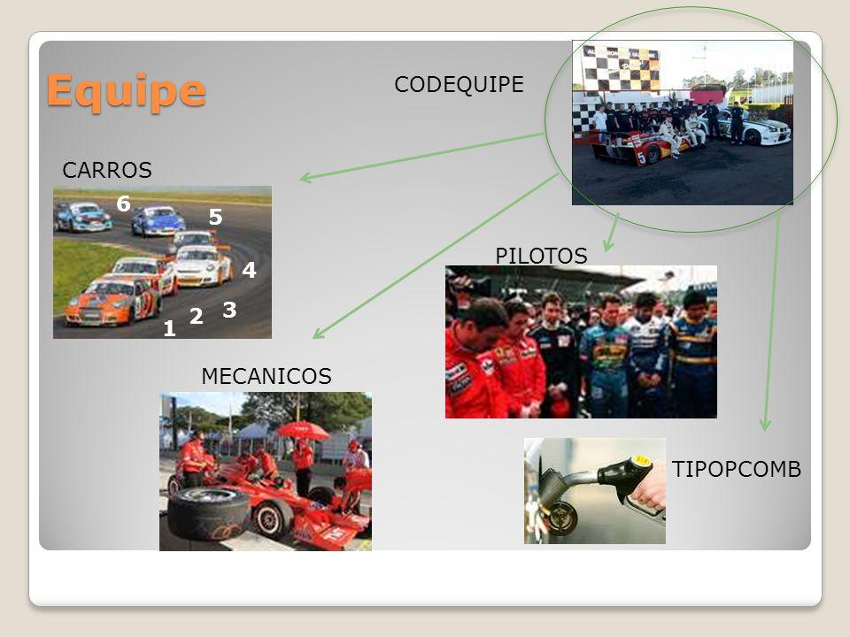 Equipe TIPOPCOMB MECANICOS PILOTOS CARROS CODEQUIPE 1 2 3 4 5 6