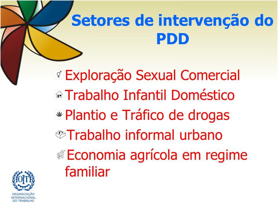 Setores de intervenção do PDD Exploração Sexual Comercial Trabalho Infantil Doméstico Plantio e Tráfico de drogas Trabalho informal urbano Economia ag