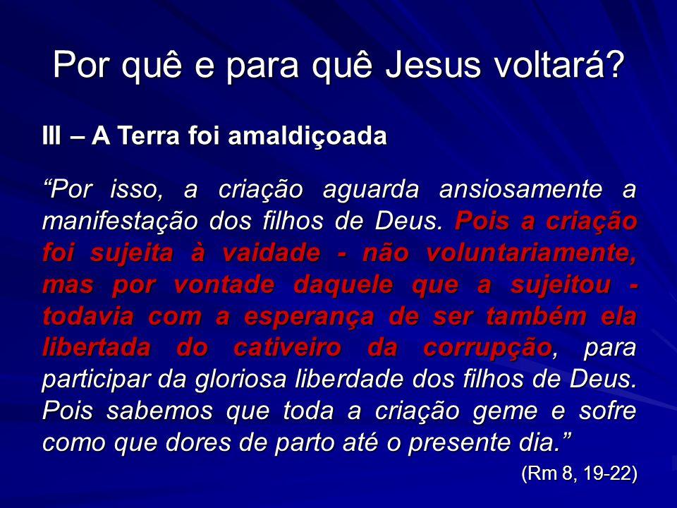 Por isso, a criação aguarda ansiosamente a manifestação dos filhos de Deus.