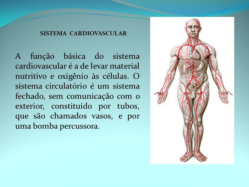 SISTEMA CARDIOVASCULAR A função básica do sistema cardiovascular é a de levar material nutritivo e oxigênio às células. O sistema circulatório é um si