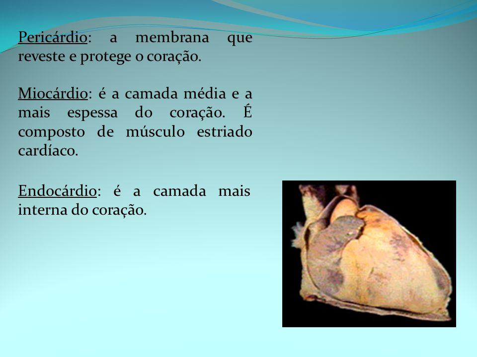Pericárdio: a membrana que reveste e protege o coração. Miocárdio: é a camada média e a mais espessa do coração. É composto de músculo estriado cardía