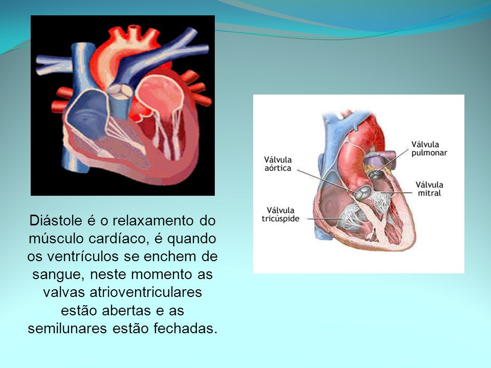 Diástole é o relaxamento do músculo cardíaco, é quando os ventrículos se enchem de sangue, neste momento as valvas atrioventriculares estão abertas e as semilunares estão fechadas.