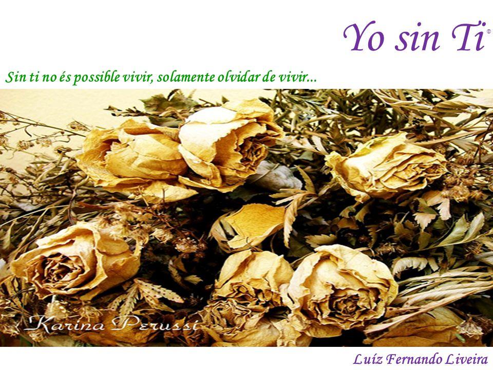Yo sin Ti Sin ti no és possible vivir, solamente olvidar de vivir... Luíz Fernando Liveira ©