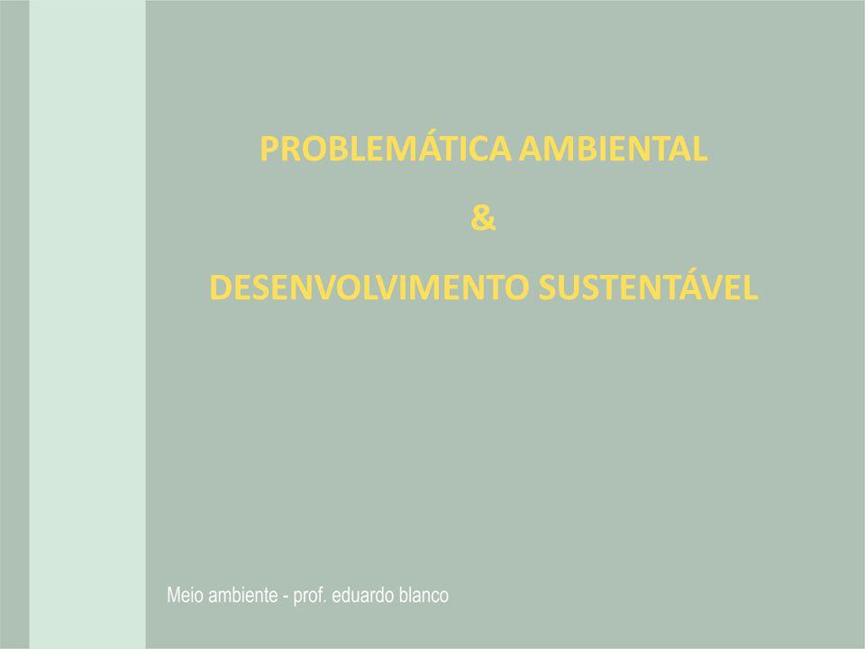 PROBLEMÁTICA AMBIENTAL & DESENVOLVIMENTO SUSTENTÁVEL