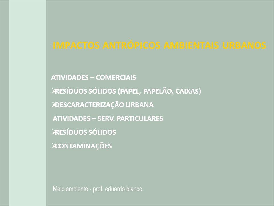 IMPACTOS ANTRÓPICOS AMBIENTAIS URBANOS ATIVIDADES – COMERCIAIS RESÍDUOS SÓLIDOS (PAPEL, PAPELÃO, CAIXAS) DESCARACTERIZAÇÃO URBANA ATIVIDADES – SERV. P