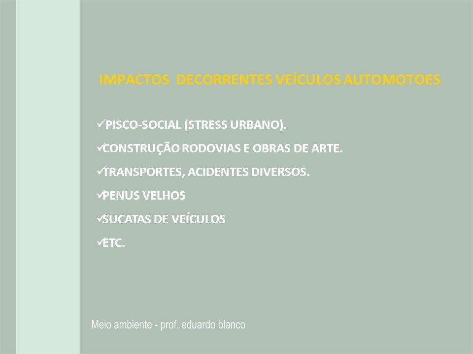 IMPACTOS DECORRENTES VEÍCULOS AUTOMOTOES PISCO-SOCIAL (STRESS URBANO). CONSTRUÇÃO RODOVIAS E OBRAS DE ARTE. TRANSPORTES, ACIDENTES DIVERSOS. PENUS VEL