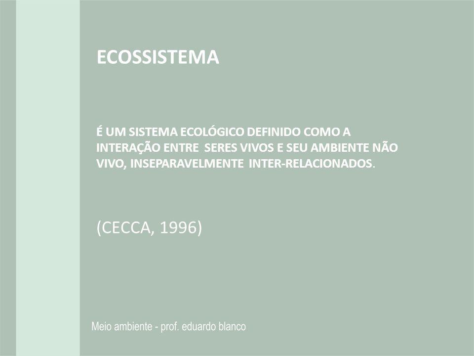 ECOSSISTEMA É UM SISTEMA ECOLÓGICO DEFINIDO COMO A INTERAÇÃO ENTRE SERES VIVOS E SEU AMBIENTE NÃO VIVO, INSEPARAVELMENTE INTER-RELACIONADOS. (CECCA, 1