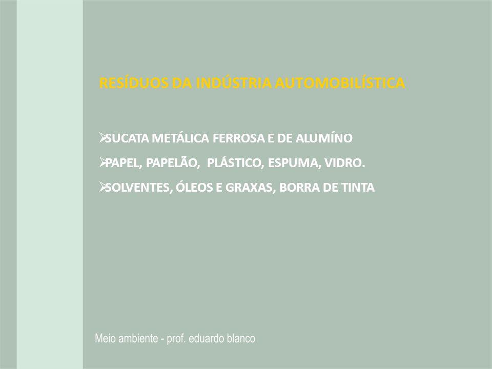 RESÍDUOS DA INDÚSTRIA AUTOMOBILÍSTICA SUCATA METÁLICA FERROSA E DE ALUMÍNO PAPEL, PAPELÃO, PLÁSTICO, ESPUMA, VIDRO. SOLVENTES, ÓLEOS E GRAXAS, BORRA D