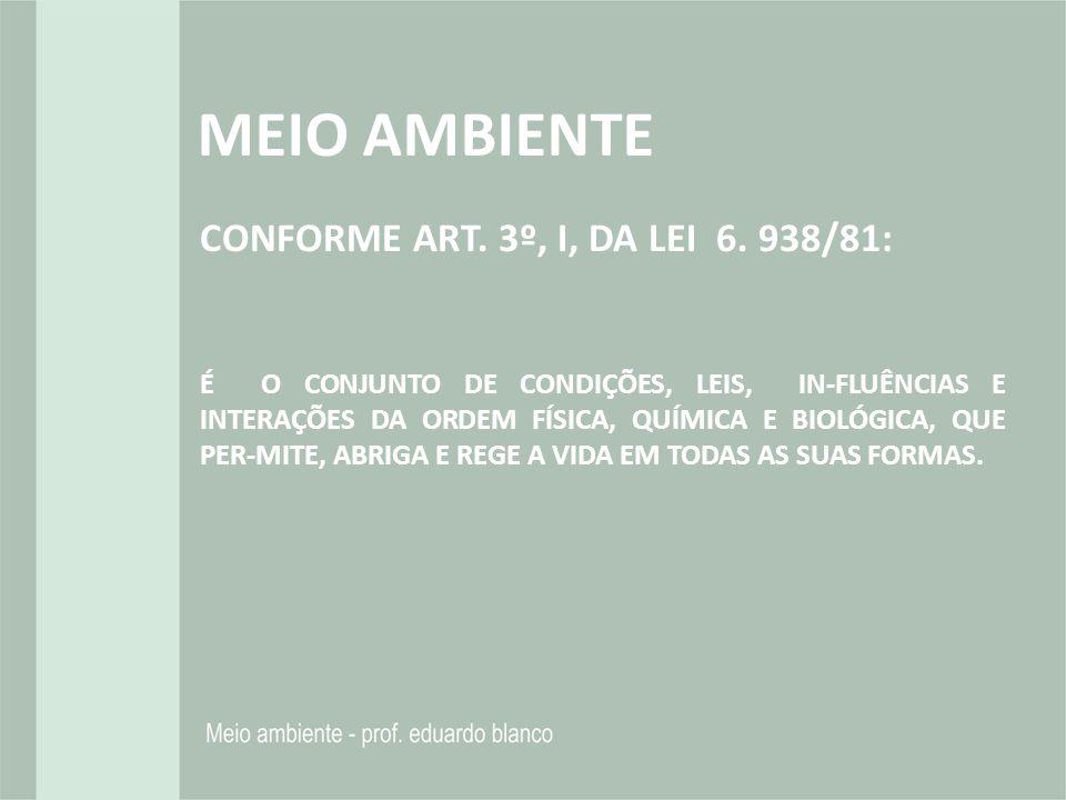 MEIO AMBIENTE CONFORME ART. 3º, I, DA LEI 6. 938/81: É O CONJUNTO DE CONDIÇÕES, LEIS, IN-FLUÊNCIAS E INTERAÇÕES DA ORDEM FÍSICA, QUÍMICA E BIOLÓGICA,