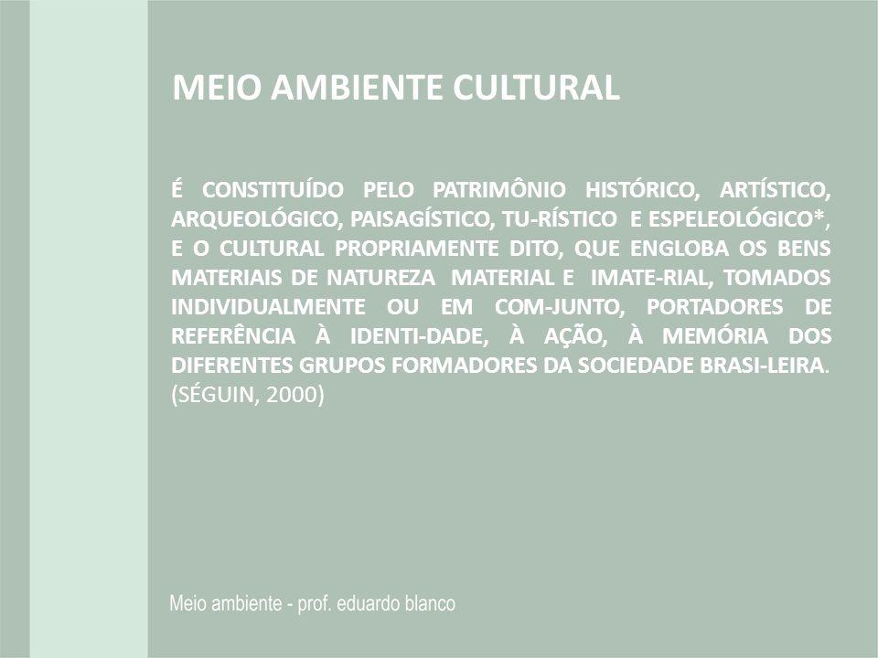É CONSTITUÍDO PELO PATRIMÔNIO HISTÓRICO, ARTÍSTICO, ARQUEOLÓGICO, PAISAGÍSTICO, TU-RÍSTICO E ESPELEOLÓGICO*, E O CULTURAL PROPRIAMENTE DITO, QUE ENGLO