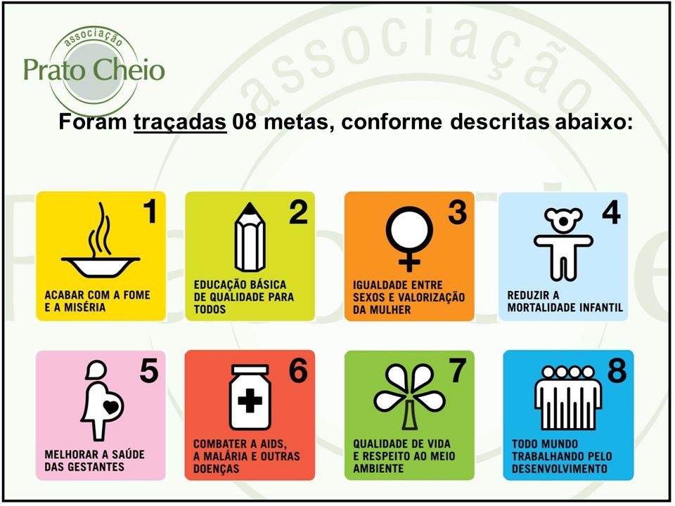 Destas metas, erradicar a e a pobreza é a primeira das transformações sociais que devem ser perseguidas por governos, organizações e cidadãos...