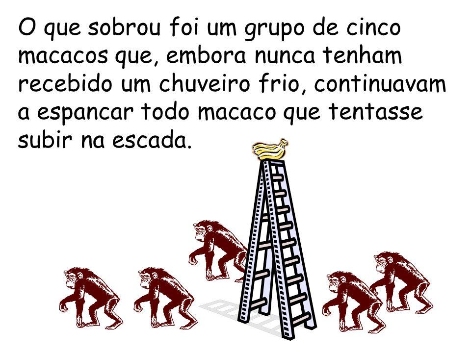 Um terceiro macaco foi trocado e o mesmo (espancamento, etc.) foi repetido. Um quarto e o quinto macaco foram trocados, um de cada vez, com intervalos