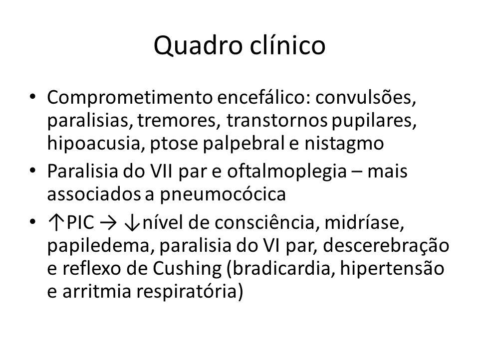 Quadro clínico Comprometimento encefálico: convulsões, paralisias, tremores, transtornos pupilares, hipoacusia, ptose palpebral e nistagmo Paralisia d