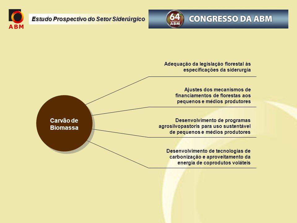 Adequação da legislação florestal às especificações da siderurgia Ajustes dos mecanismos de financiamentos de florestas aos pequenos e médios produtor