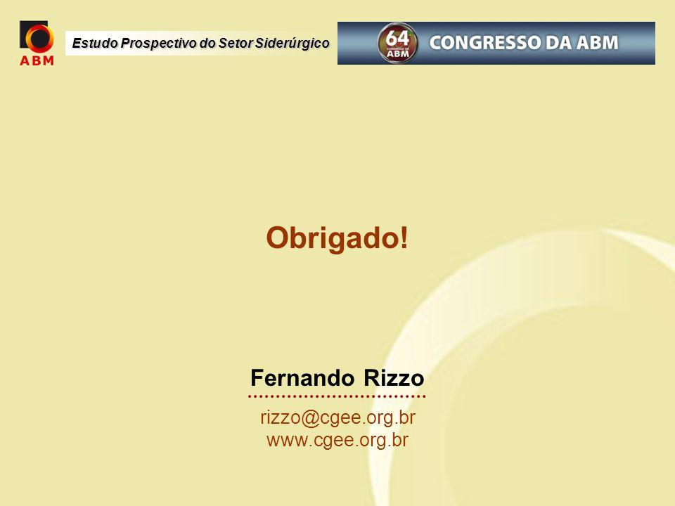 Estudo Prospectivo do Setor Siderúrgico Obrigado! Fernando Rizzo rizzo@cgee.org.br www.cgee.org.br