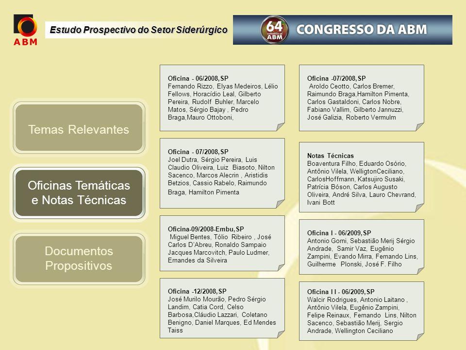 Estudo Prospectivo do Setor Siderúrgico Oficinas Temáticas e Notas Técnicas Documentos Propositivos Temas Relevantes Oficina - 06/2008,SP Fernando Riz